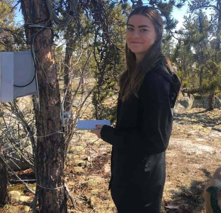 2111Science61 photo courtesy of Dana Harris Dana Harris conducts research on jack pines outside of Yellowknife in 2017.