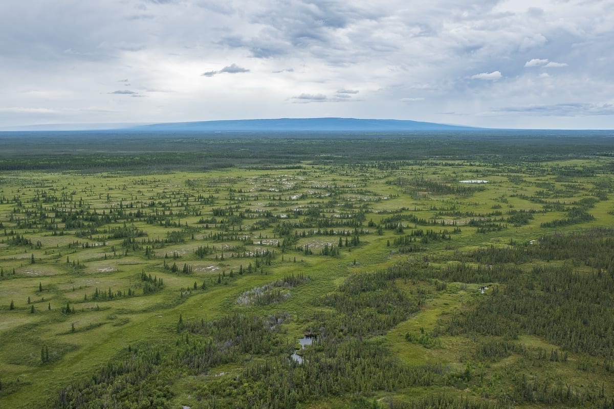 The Wyss foundation is committing $750,000 to the Dehcho First Nation to help protect the Edéhzhíe National Wildlife Area. Courtesy of Ducks Unlimited