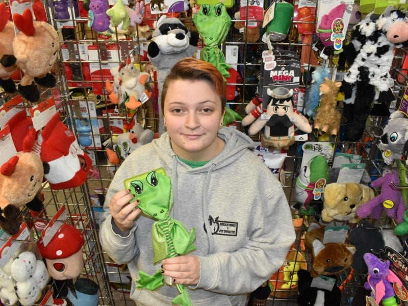 Staff member Ashley Stride works in Borealis Kennels and Pet Specialties' Franklin Avenue shop that has been selling 25 per cent more pet food and toy items than usual. Blair McBride/NNSL photo
