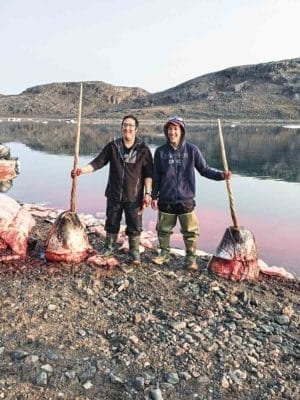 0402Shaiane Kootook_WINNER<br /> Shaiane Kootook<br /> Taloyoak<br /> Wayne and Andrew Aiyout with their first narwhal. On the other side of the ocean, on a beautiful day, August 21, 2017.