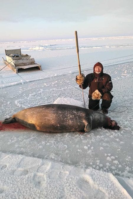 1802Dino Bruce_WINNER Dino Bruce Coral Harbour Hunters in Coral Harbour still practising a traditional method using only a harpoon. John Nakoolak caught this female bearded seal. Southampton Island or Coral Harbour (Jan 30, 2019).